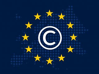 Article 13 FAQs
